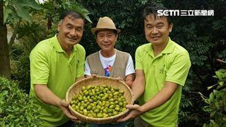 《草地狀元》見證台灣產業爆發創新力