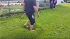 (圖/翻攝自YouTube)美國,草皮,水泡