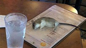 女老師吃飯!「巨鼠」突掉菜單上暈死(圖/翻攝自臉書)