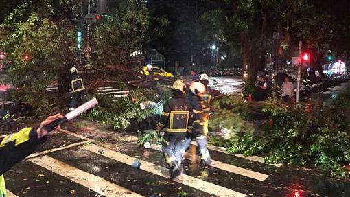 路樹,倒塌,台北市