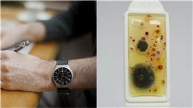 戴手錶對於現代人來說,不只是方便看時間,手錶更是一個時尚配件,許多民眾天天戴著手錶出門,卻從沒想過要清潔它,那配戴在手腕的手錶真的乾淨嗎?近日英國手錶公司「Tic Watches」就做出一項驚人研究,他們發現手錶錶帶上的含菌量,竟然比馬桶座高出「3.1倍」,讓不少民眾都難以置信!(右圖/翻攝自tic watches)