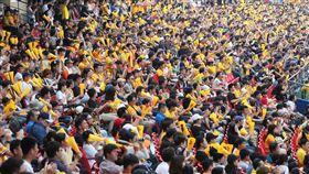 陳江和引退賽 滿場球迷支持(1)中職中信兄弟隊陳江和引退賽21日下午在天母棒球場舉行,吸引大批球迷進場觀賽,高舉加油棒賣力加油,場面熱鬧。中央社記者吳家昇攝 108年4月21日