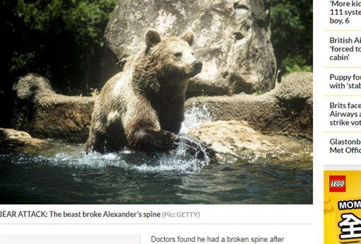 棕熊,食物,獵人,俄羅斯,乾屍https://www.dailystar.co.uk/news/latest-news/787978/bear-attack-russia-alexander-survived-den-drank-urin