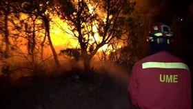 熱浪,歐洲,西班牙,加泰隆尼亞,野火(圖/翻攝自The Telegraph網頁)