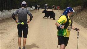 美國,科羅拉多州,黑熊,馬拉松(圖/翻攝自Quentin Genke臉書)