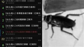 蟑螂,PTT,徵才,新興職業 圖/翻攝臉書