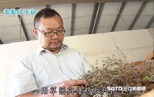 台江漁人-顏榮宏