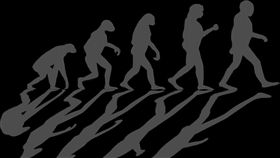 人類演化(圖/pixabay)