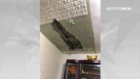 滲水屋頂崩1800