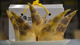 新北綠竹筍嚐鮮正當時(1)新北市綠竹筍進入盛產期,農業局林務科長黃嘉文29日表示,綠竹筍是夏季受歡迎的蔬菜,不僅清脆甜美,因富含纖維質、低熱量、零膽固醇,能促進腸胃功能,廣受消費者喜愛。中央社記者黃旭昇新北市攝 108年6月29日