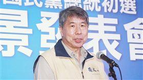 國民黨總統初選國政願景發表會候選人張亞中。(記者林士傑/攝影)
