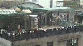 陽台,胸罩,內衣,爆廢公社公開版 圖/翻攝自臉書爆廢公社公開版