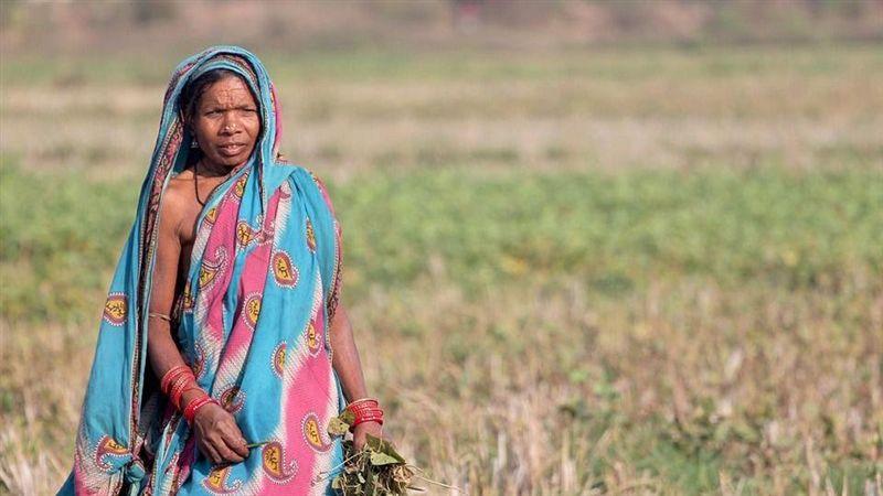 宗教歧視女性事件頻傳!印度最高法院審視法律問題