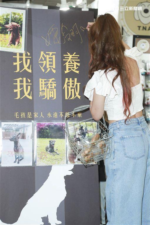 解婕翎為寵物用品展站台,推廣「讓浪不流浪」圖/記者林士傑攝影