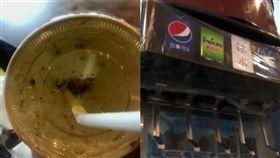 (圖/翻攝自看看新聞)中國,可樂,蟑螂