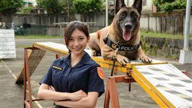 祈錦鈅魅力無法檔,緝毒爆破犬警官小淘想偷舌吻。(圖/固力狗娛樂提供)