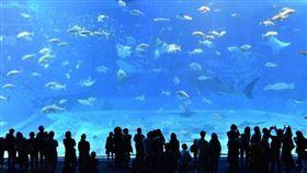 沖繩;圖/翻攝自pixabay