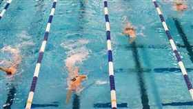 游泳池。(圖/翻攝自PIXABAY)