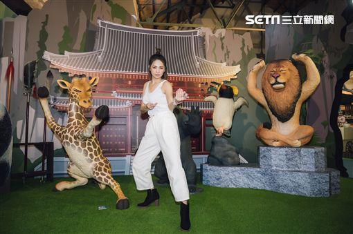 展覽,動物也瘋狂,朝隈俊男,Animal Life,阿喜,林育品,寬宏藝術