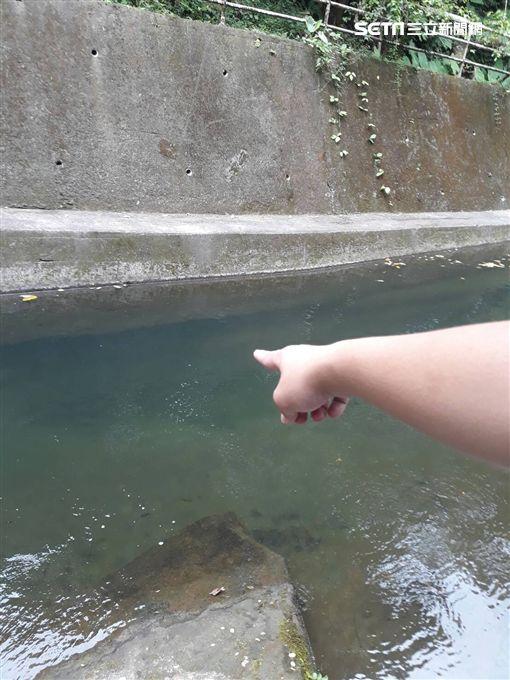 苗栗,卓蘭,野溪,溺水,踩空,