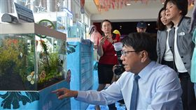 屏東縣,觀賞魚,研發培育,水族生物展,交流