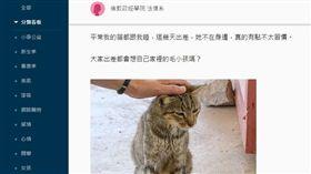 蔡英文Dcard分享摸貓照「出差想毛小孩」 網看亮點:是總統!