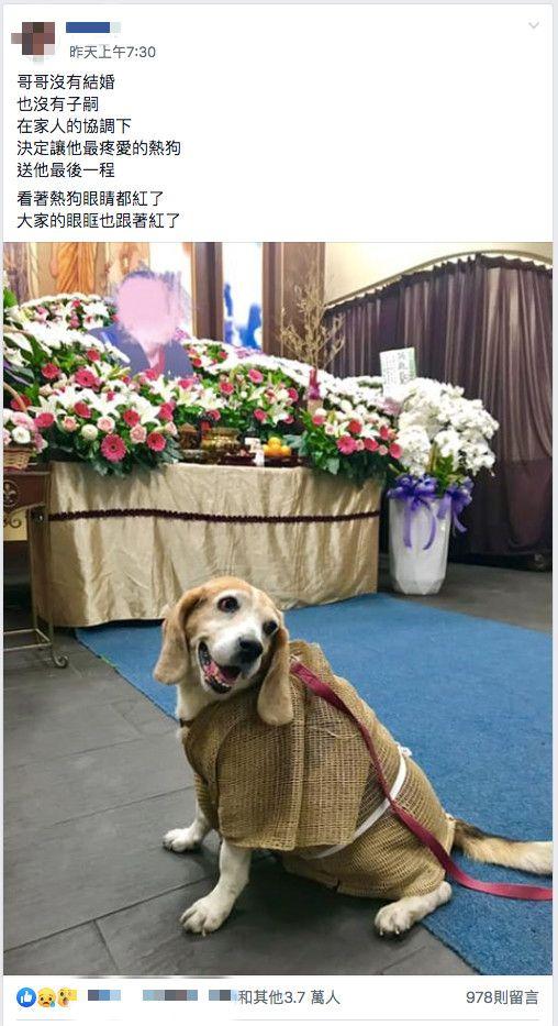 主人過世…愛犬「披麻戴孝」棺前哭紅眼!3.7萬人全落淚圖翻攝自爆廢公社臉書