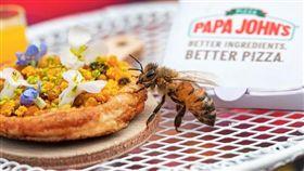 蜜蜂,披薩,迷你,連鎖, Papa John's, Beezas。(圖/翻攝自YOUTUBE)