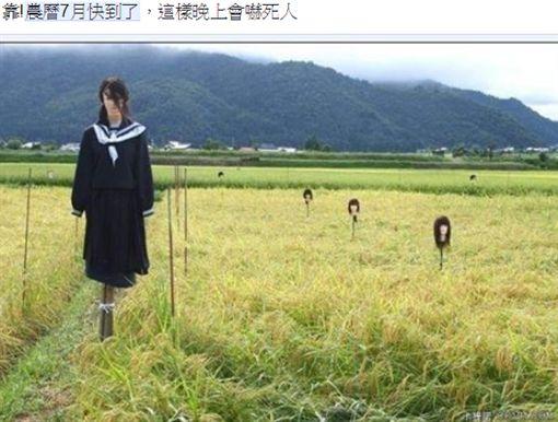 稻草人,農田,女鬼,伊藤潤二(圖/翻攝自臉書)