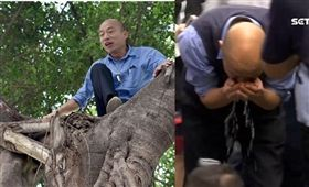 韓國瑜 爬樹 組合圖 資料照