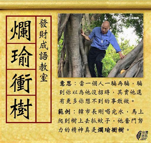 繼勘察淹水災情「捧水」聞有無臭味後,高雄市長韓國瑜今(24)日到視察登革熱防疫作業時又出奇招,竟然親自「爬樹」檢查樹洞積水有無使用「發泡棉」補上。不少網友看到後,紛紛痛批在做秀,簡直是「爛瑜衝樹」。(圖/翻攝自台灣迷因 taiwan meme)