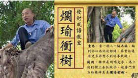 繼勘察淹水災情「捧水」聞有無臭味後,高雄市長韓國瑜今(24)日到視察登革熱防疫作業時又出奇招,竟然親自「爬樹」檢查樹洞積水有無使用「發泡棉」補上。不少網友看到後,紛紛痛批在做秀,簡直是「爛瑜衝樹」。(組圖/資料照、翻攝自台灣迷因 taiwan meme)