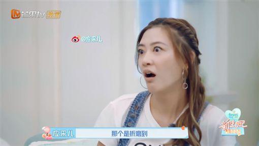 應采兒,陳小春,Jasper/翻攝自芒果tv微博