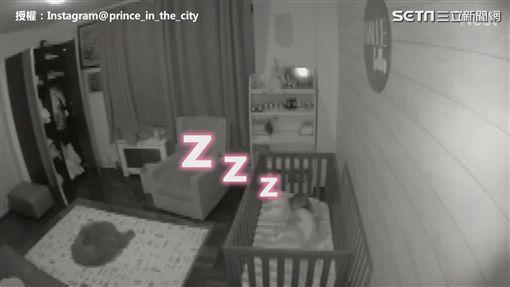 ▲Halle看見Prince後立刻不哭,而且自己躺回去睡好。(圖/Instagram@prince_in_the_city 授權)