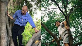 韓國瑜,李來希,爬樹 組合圖/翻攝自臉書