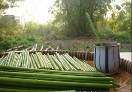 越南,植物吸管,蒲草。(圖/翻攝自推特)