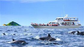 經典小鎮,票選,結果,觀光局,宜蘭縣,龜山島,/宜蘭縣賞鯨推廣協會提供