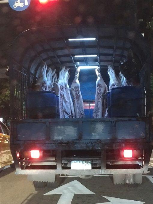 豬肉,貨車,屍體,爆廢公社 圖/翻攝自臉書爆廢公社