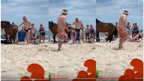 男子摸馬遭踢下體(圖/翻攝自ViralHog,YouTube)