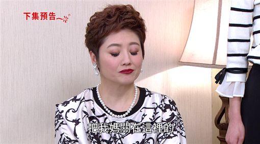 炮仔聲,江宏傑,蔡韻如,王妍熙,劉添丁,雙胞胎,失明