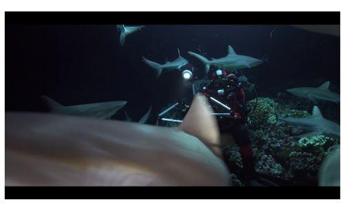 法國馬賽港,海底深潛,另一個世界,影像展覽