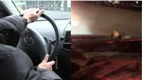 貢丸,開車,美容,雨刷,車禍(圖/資料照、爆怨公社)