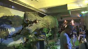 (業配)恐龍親子展0917