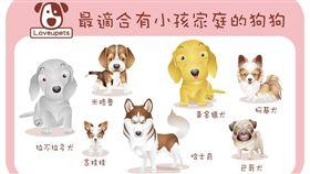 ▲最適合有小孩家庭的狗狗(圖/愛你寵物網loveupets)