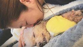 Selina愛犬過世。翻攝自Selina IG