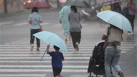 氣象局,午後大雨,熱對流,雷擊,強陣風