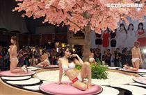 日本AV女優Julia史上最強胴體有J罩杯好身材。(記者邱榮吉/攝影)