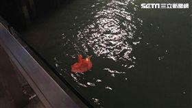 香港,反送中,五星旗(圖/翻攝自PassionTimes 熱血時報授權提供)