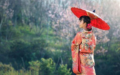 ▲櫻花妹(圖/翻攝自pixabay)