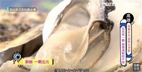 愛玩客嘉義東石牡蠣